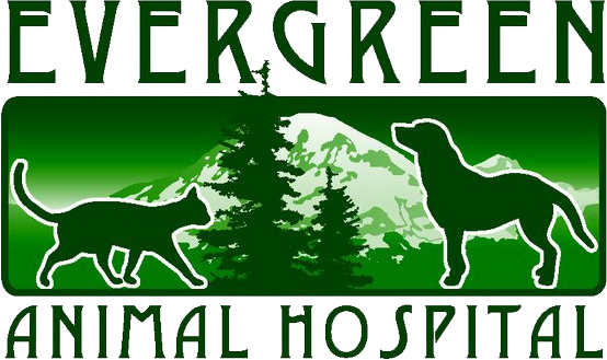 Evergreen Animal Hospital  logo